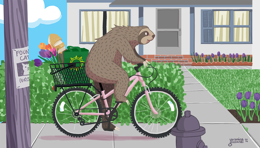 Sloth on a mountain bike illustration