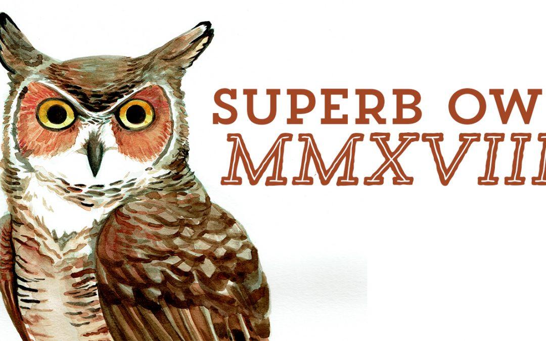 2018 Superb Owl Painting